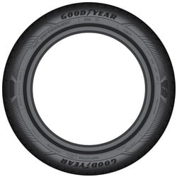Pneu Goodyear Efficient Grip Performance 2 195/65 R15 91 H